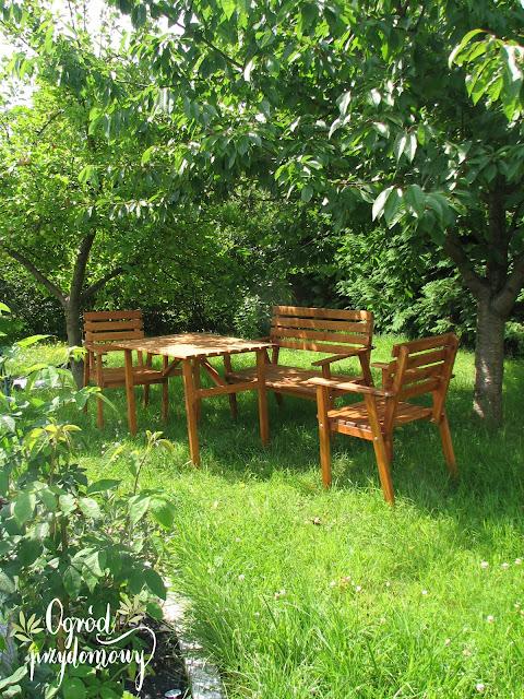 Ogród przydomowy - od czego zacząć planowanie?