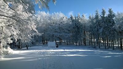 Zimna Polanka pod Rymarzem