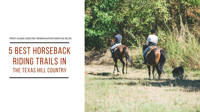 The 5 Best Horseback Riding Trails in the Texas Hill Country blog cover image
