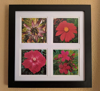 Red Flowers Photo Tetraptych by Citysqwirl