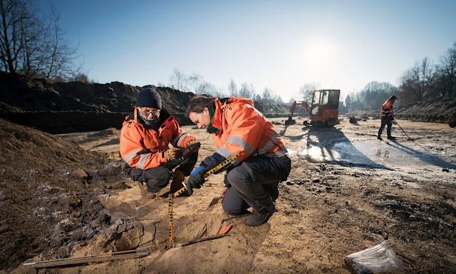 Skeletons from Eighty Years' War found at Den Bosch, Netherlands