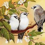 https://deti.parafraz.space/aleksandra-i-dve-ali-azbuka-s-imenami/