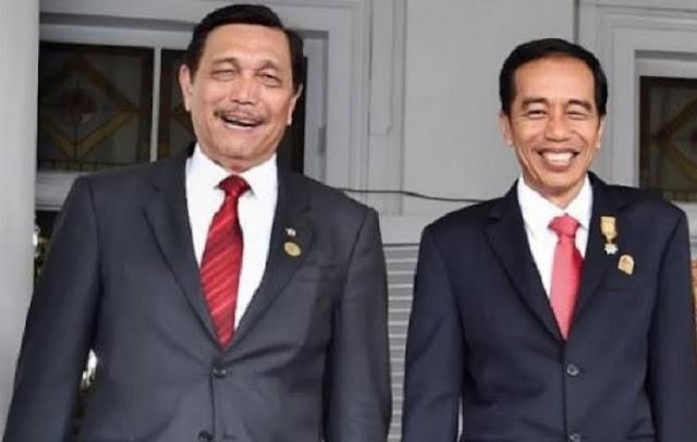 Jokowi Minta Luhut Siapkan Masyarakat Hidup Berdampingan dengan Covid-19