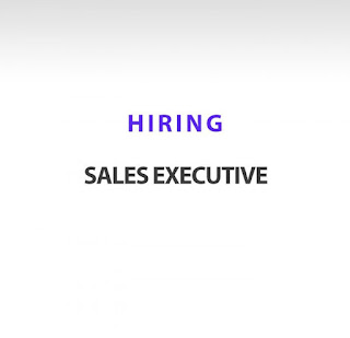 12th Pass, ITI, Diploma, Any Graduate Requirement for Sale Executive in Rajasthan, Punjab and  Haryana Locations