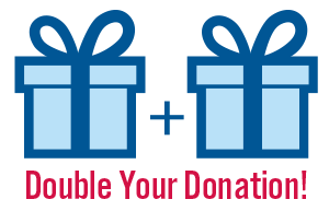 Your donation will be doubled by Indivisible from October 4-31