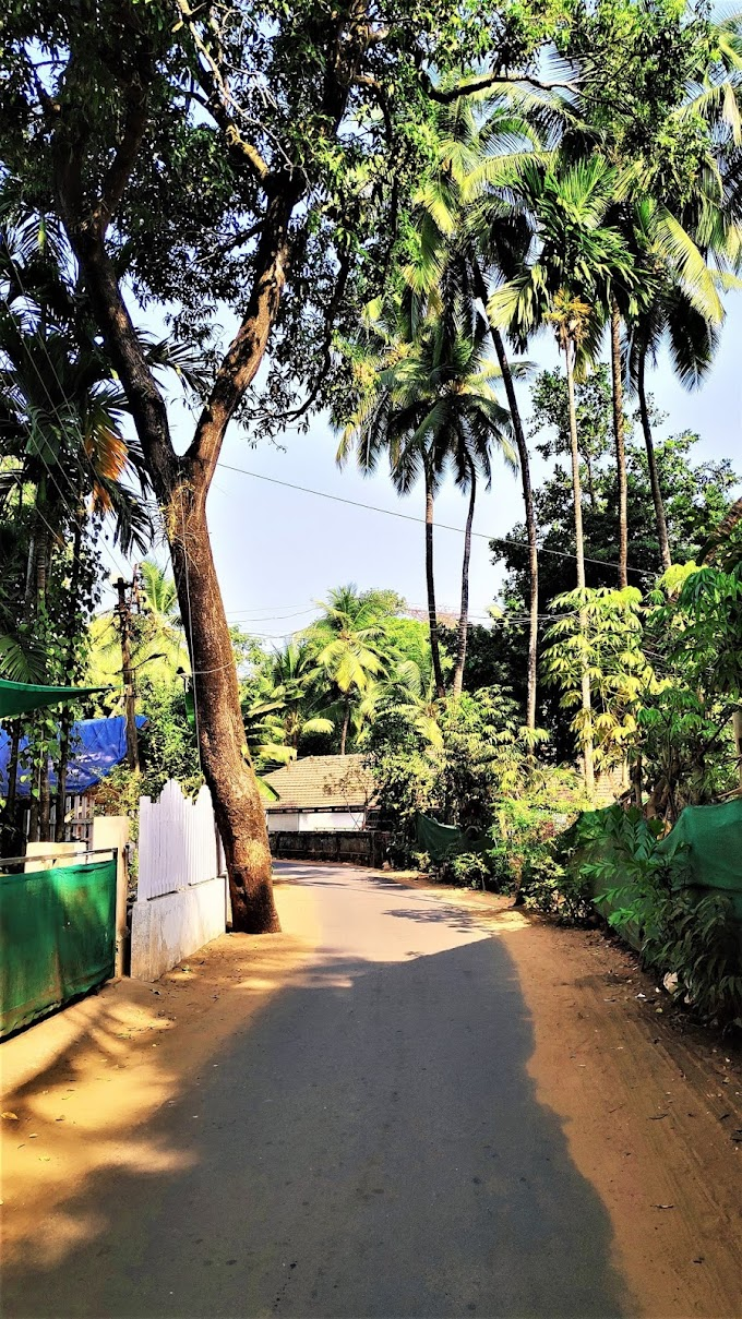 Tarkarli beach Road