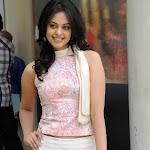 Bindu Madhavi Telugu Actress Latest Cute Stills