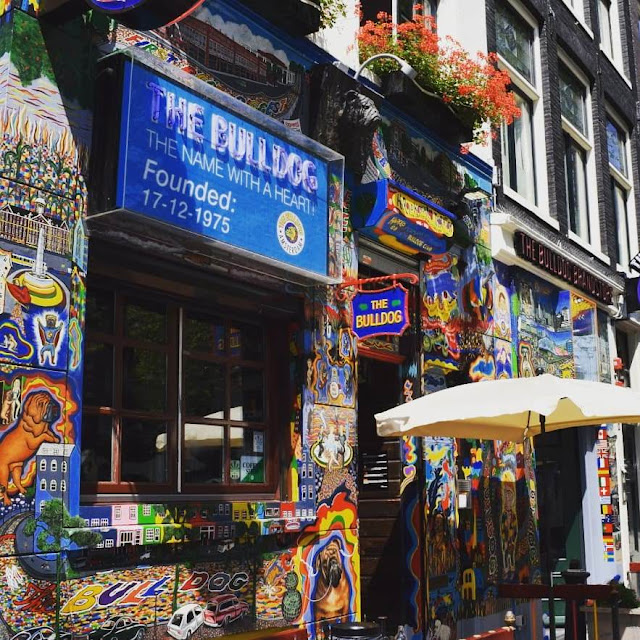 We Went To Amsterdam For Six Hours And Here's What We Did : Bulldog The First coffeehouse