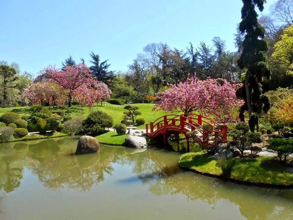 cocoon feng shui jardin japonais toulouse. Black Bedroom Furniture Sets. Home Design Ideas