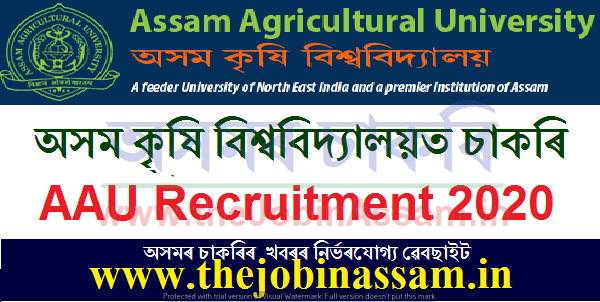 AAU Jorhat Recruitment 2020