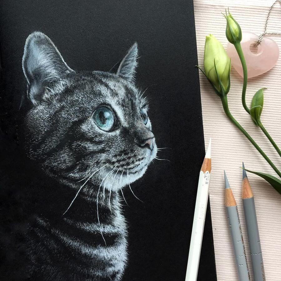 03-Cat-Ruzanna-www-designstack-co