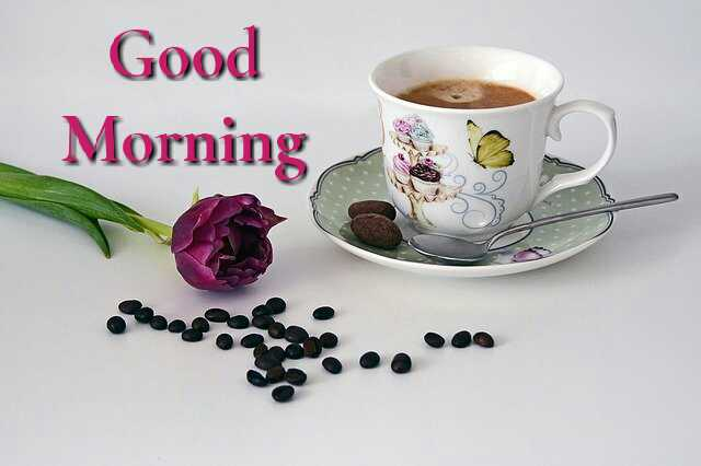 Beautiful good morning photo image with cup of coffee and rose flower