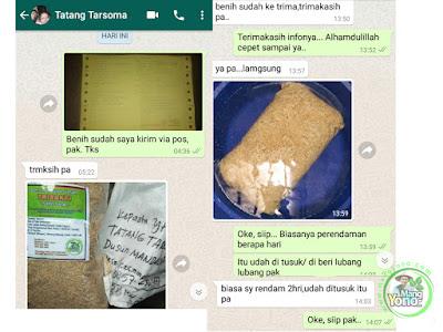 Info dari kang Tatang