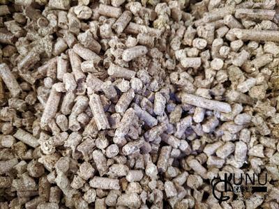 Penggunaan wood pellet untuk kucing