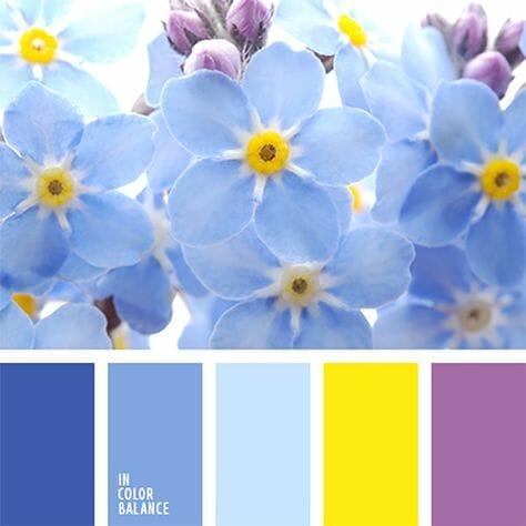 Paleta kolorów złożona z odcieni niebieskiego, żółtego i fioletu