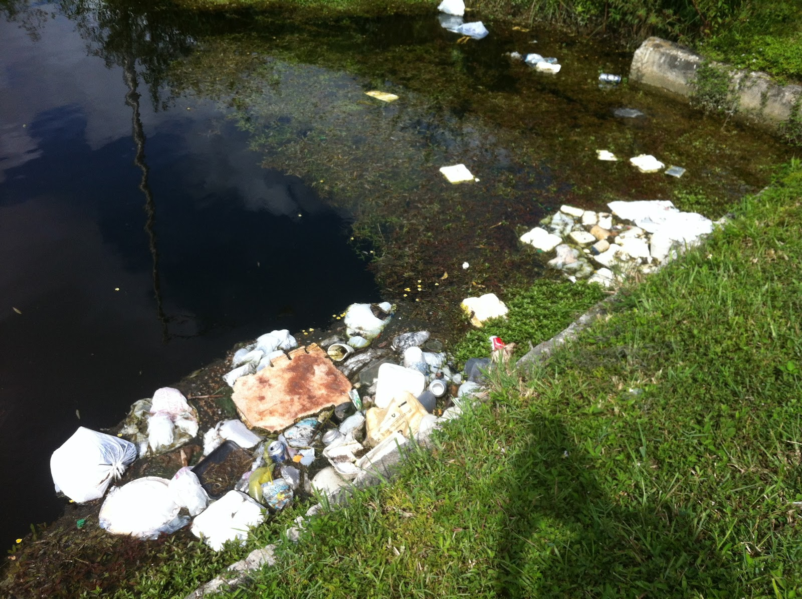 environment water pollution - photo #4