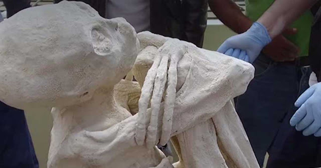 1800 Year Old Mummy From Nazca Lines Proven To Be A Real 3 Fingered Alien