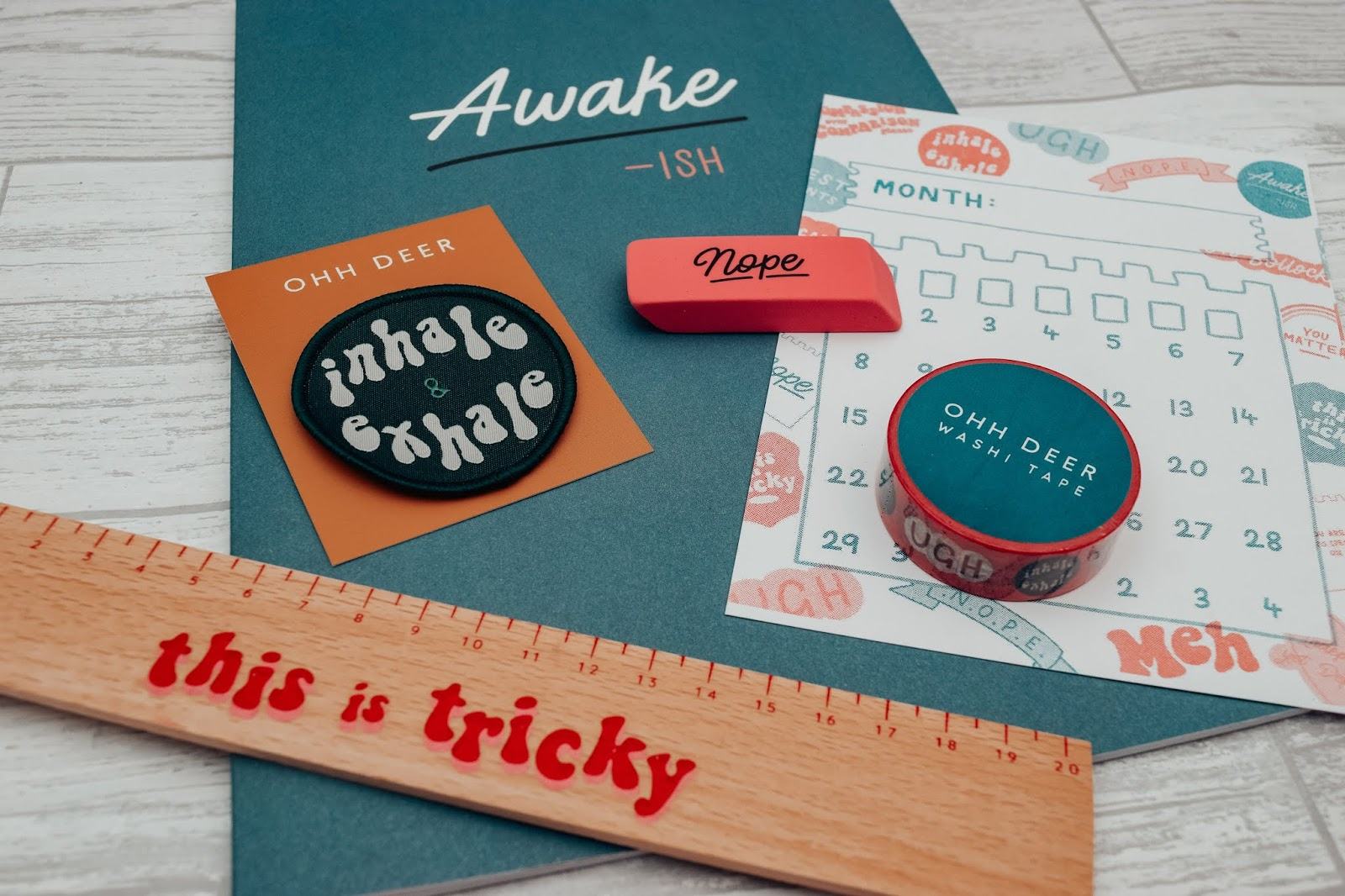 A flat lay of the contents inside the subscription box.