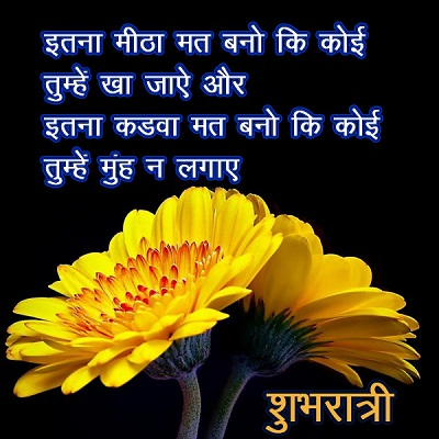 Good Night Flower Images in Hindi