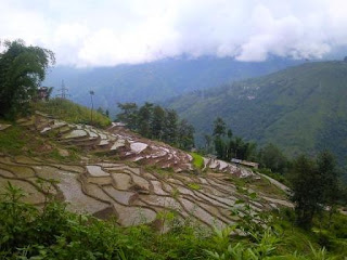 Cheap and best home stays in Darjeeling