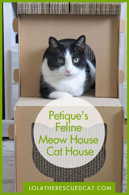 Petique Feline Meow House