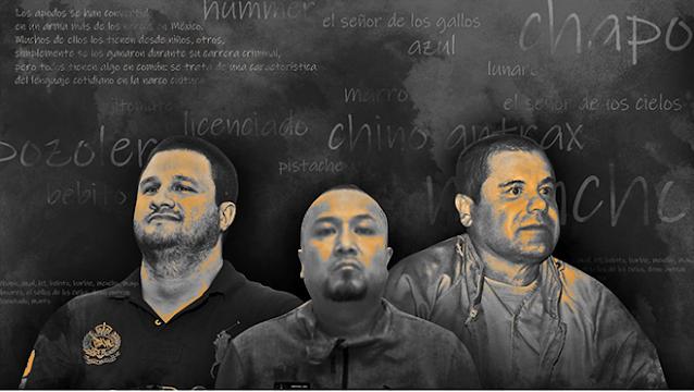 """LA """"BARBIE,el MENCHO,el CHAPO o el MARRO"""": EL ORIGEN de los APODOS"""