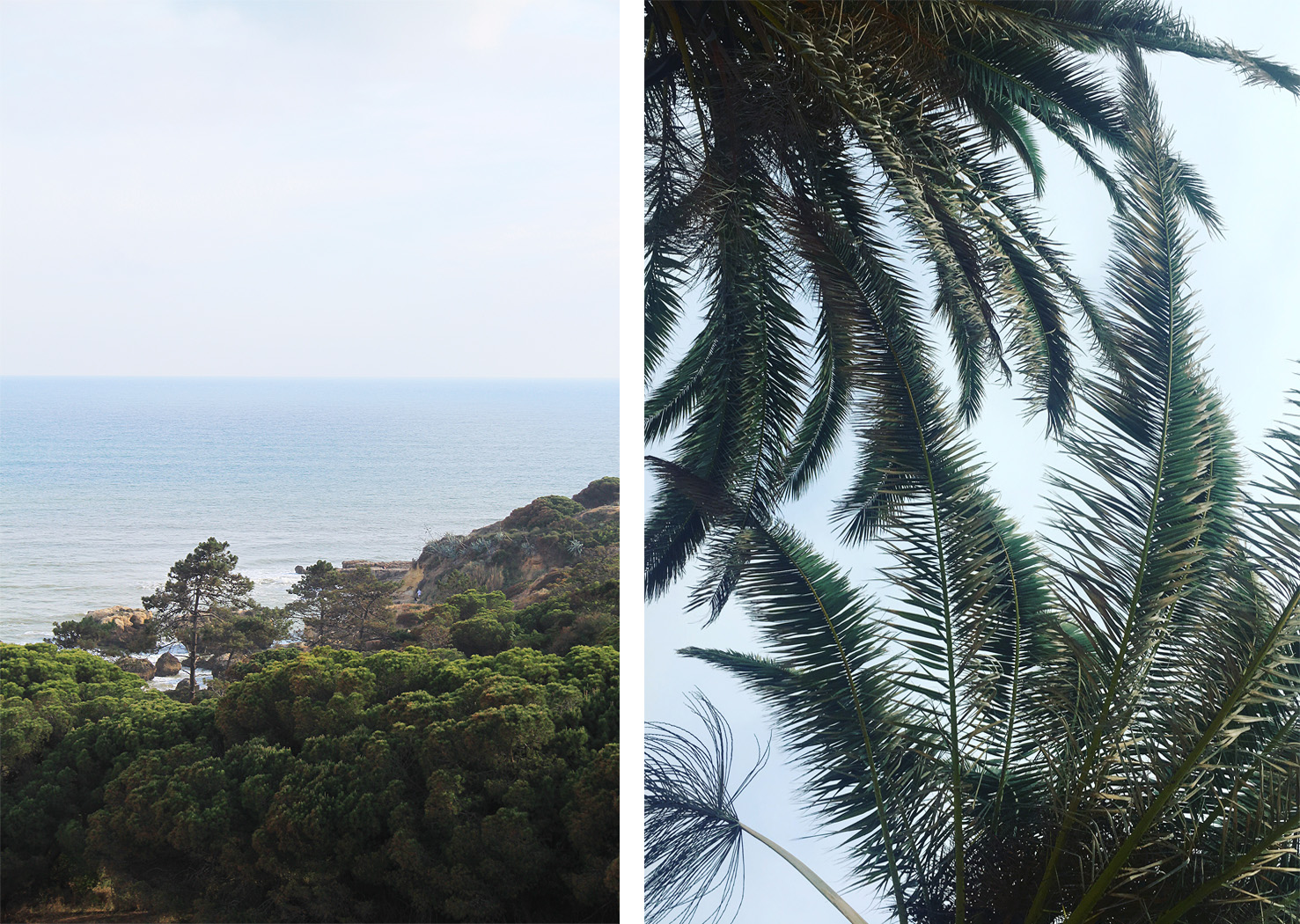Sea views in Albufeira