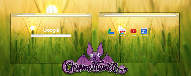 Barley Field Google Theme  | Chrome Web Store