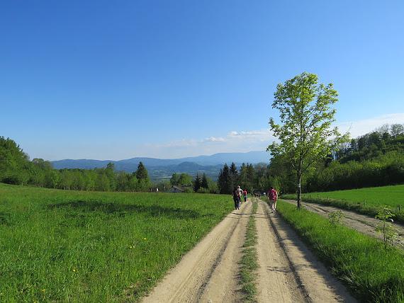 Przełęcz Komarnicka