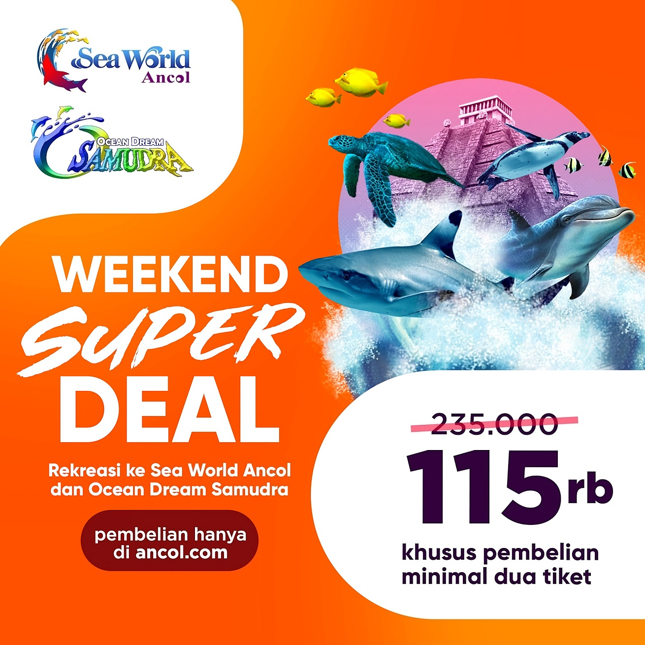 Promo Seaworld Weekend Super Deal hanya Rp. 140.000 All Day
