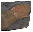 Jenis-Jenis Batuan Sedimen Yang Terdapat Di Muka Bumi