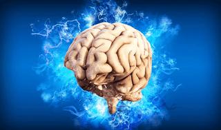Kopi Meningkatkan Kecerdasan dan Kecepatan Berpikir