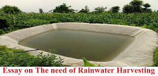 Essay on The need of Rainwater Harvesting