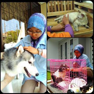 Mau Merintis Bisnis Pet Shop Ikuti Langkah Berikut Ini