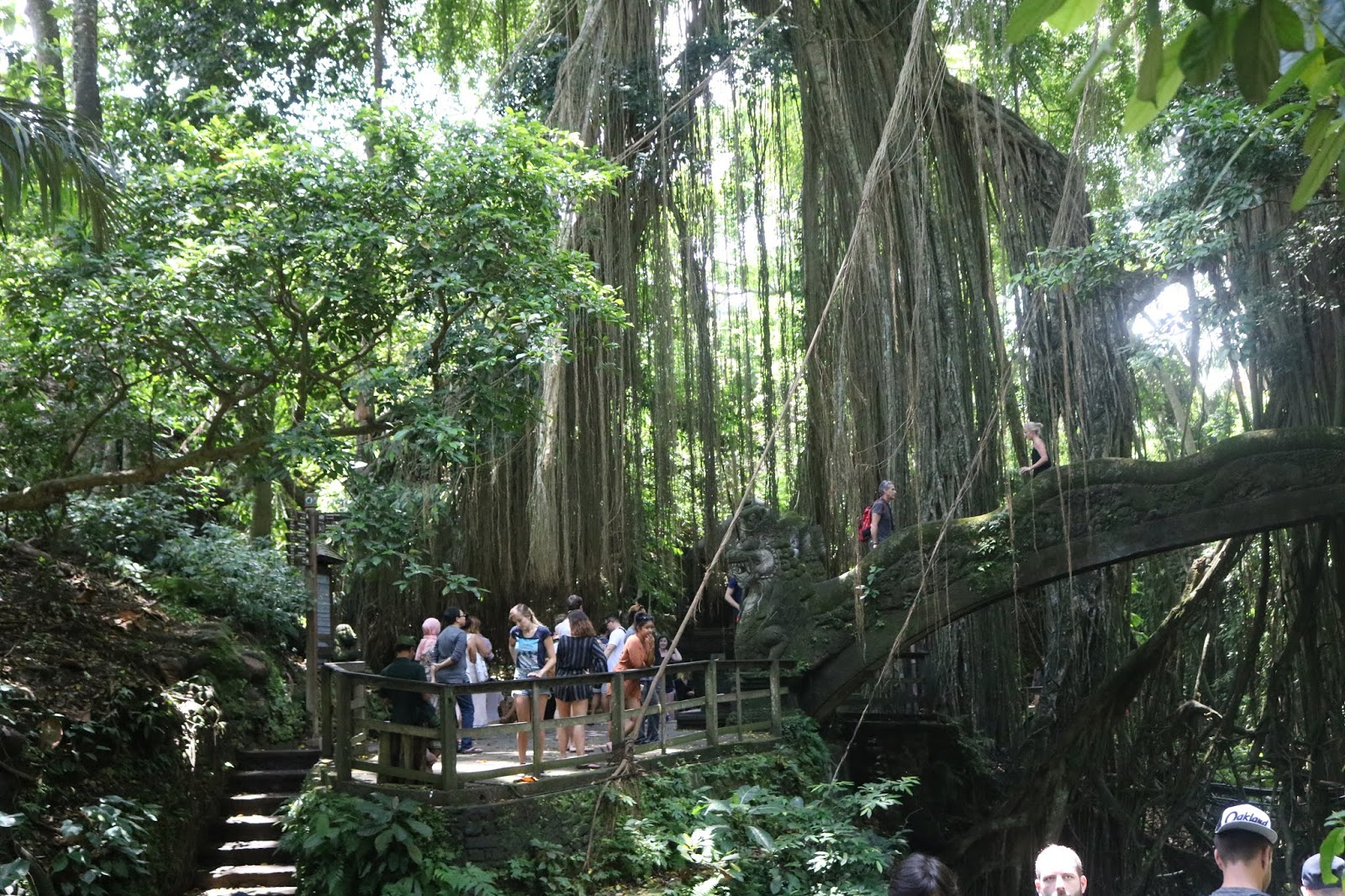 SACRED MONKEY FOREST, Ubud