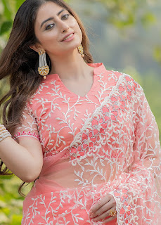Peach Embroidered Heavy Border Saree With Blouse indian party wear front design