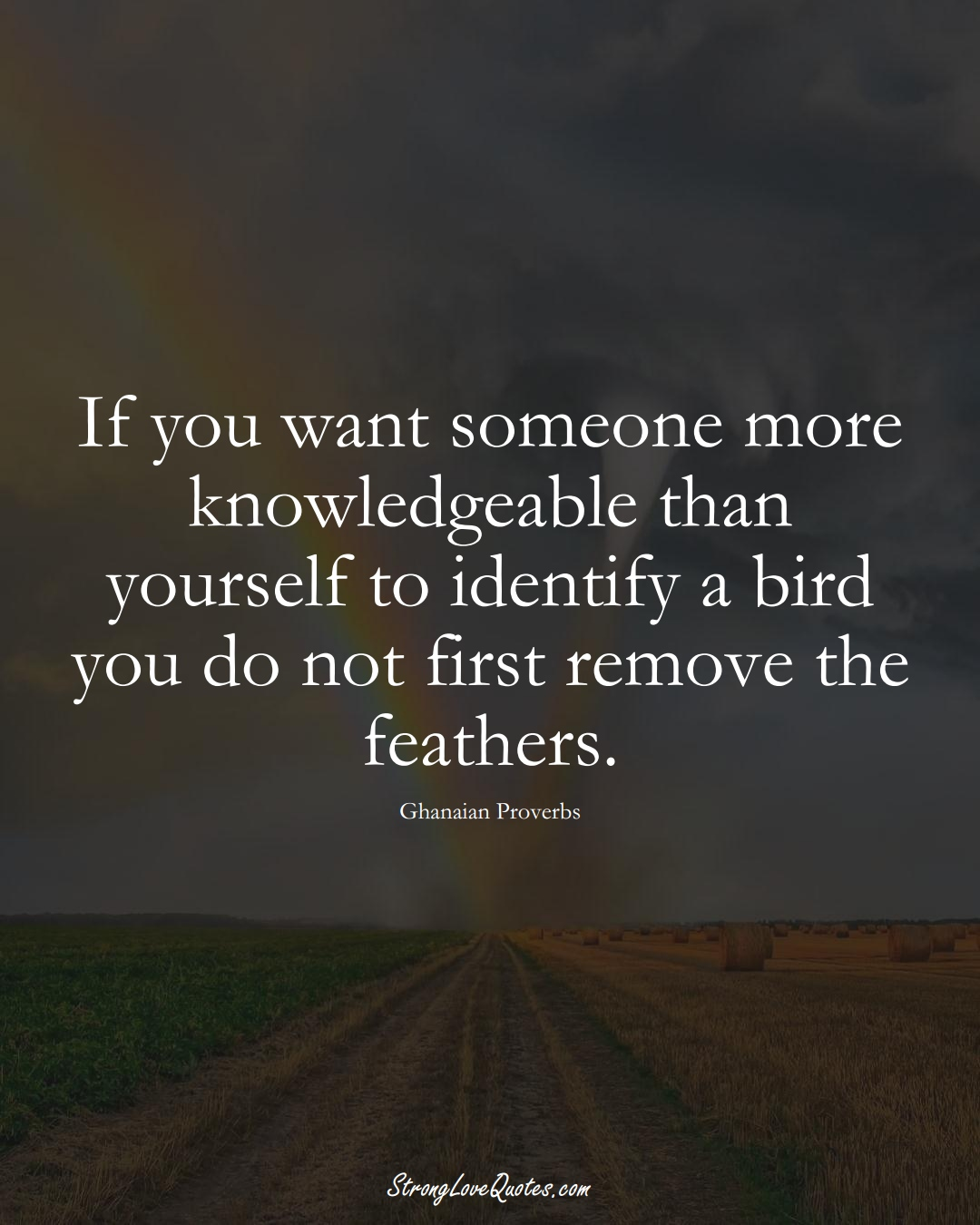 If you want someone more knowledgeable than yourself to identify a bird you do not first remove the feathers. (Ghanaian Sayings);  #AfricanSayings