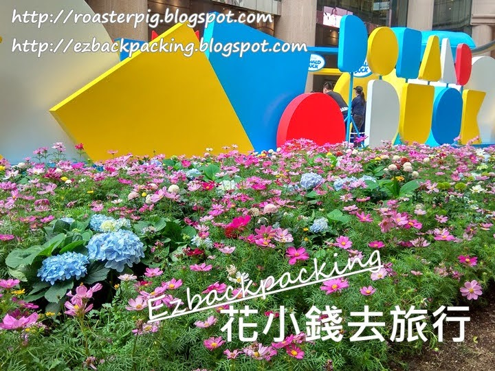 銅鑼灣繡球花