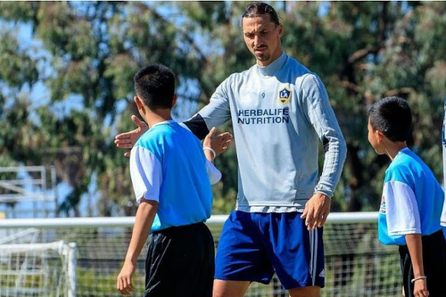Thai give in survivors prepare with Galaxy, Ibrahimovic