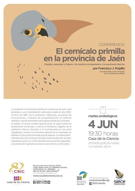 Conferencia: El cernícalo primilla en la provincia de Jaén. Por Francisco J. Pulpillo, 4 de Junio 2019. Grupo Local SEO-Sevilla.