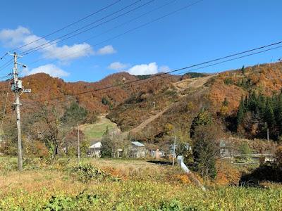 大湯温泉スキー場の紅葉