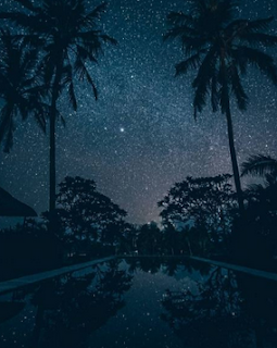 4 Contoh Puisi Quint dalam Bahasa Indonesia