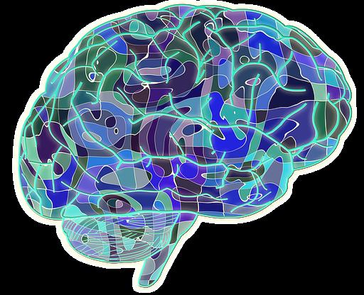 Neurogénesis