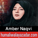https://www.humaliwalayazadar.com/2013/01/amber-naqvi-nohay-2009-to-2013.html