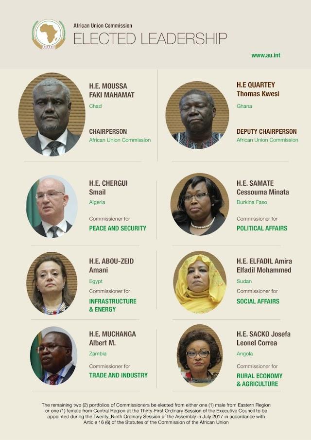 Unión Africana: Ofensiva masiva de la Françafrique