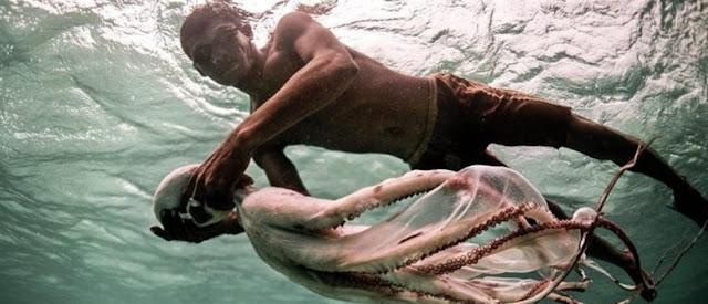"""Ζουν μέσα στο νερό: Οι γενετικά μεταλλαγμένοι """"τσιγγάνοι της θάλασσας"""""""