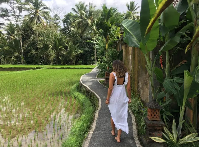 Bali, indonesia: What you need to know before you go