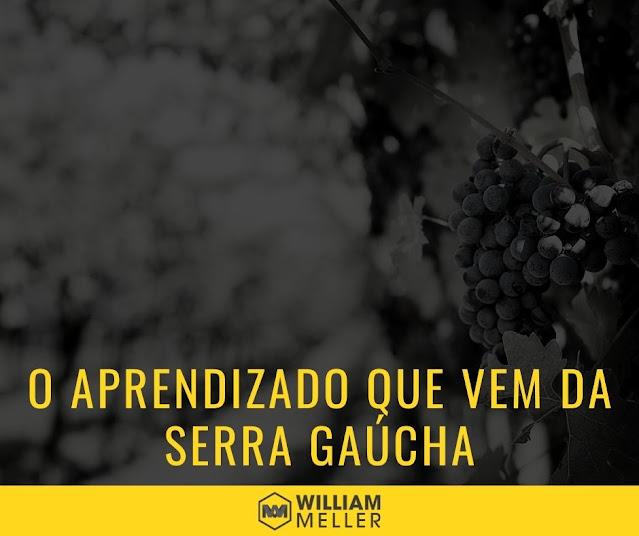 O aprendizado e networking que vem da Serra Gaúcha