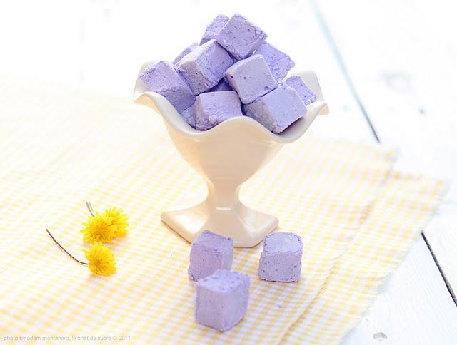 avis my wish scentsy, blog bougie, blog beauté, blog parfum