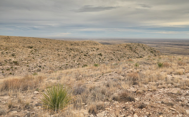 chihuahuan desert carlsbad caverns national park new mexico